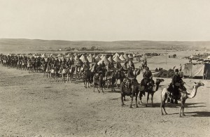 The Camel Corps at Beersheba in 1915. Image in public domain.