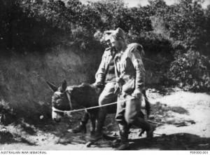 Private John Simpson with a wounded soldier on his donkey in Shrapnel Gully at Anzac Cove in 1915. Image courtesy Australian War Memorial.