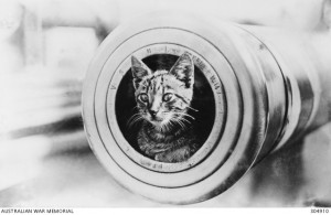 The feline mascot of the light cruiser HMAS Encounter, peering from the muzzle of a 6 inch gun. Image courtesy Australian War Memorial.