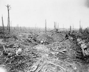 British soldiers digging a communication trench through Delville Wood, John Warwick Brooke, July 1916. Image courtesy Imperial War Museum ©IWM (Q 4417).