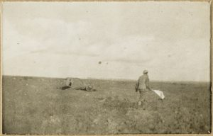 Looking for wounded on the Western Front under protection of a white flag 1916, William Henry Thornhill Burrell. Image courtesy Mitchell Library, State Library of New South Wales.