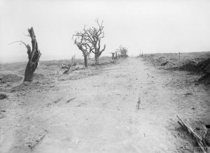 The road leading to Guillemont, Ernest Brooks, 10 September 1916. Image courtesy Imperial War Museum © IWM (Q 1162).