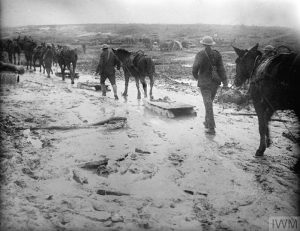 Horses drag sleighs, used to convey wounded over muddy ground at Le Sars, October 1916. Image courtesy Imperial War Museum © IWM (Q 1495).