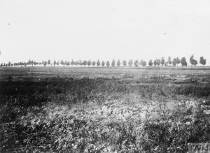 Camouflaged gun and positions, near Sailly-Saillisel, Peronne-Bapaume Road in rear, September 1916. Image courtesy Imperial War Museum © IWM (Q 42232).